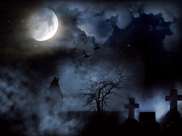 Vida y muerte Pixabay 7