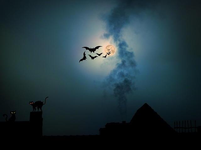 agatha christ casa misterio gatos noche pixabay