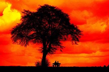 tarde amor pareja soledad pixabay