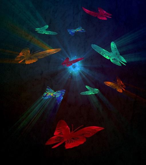 mariposa pixabayu