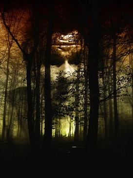 bosque miedo pixabay
