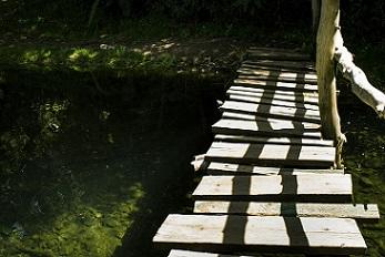 colombia-camino-pixabay