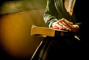 cara-gente-cultura-libro-leer-pixabay