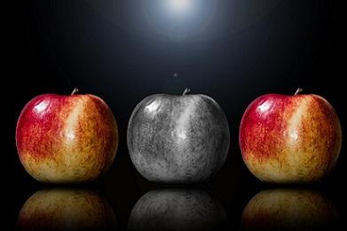 encontrarnos-manzanas-colores-razas-multi-pixabay
