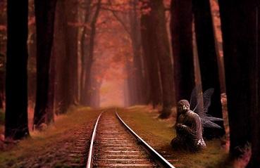 a-tren-camino-sol-tarde-reflex-pixabay