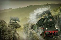 The London train stops
