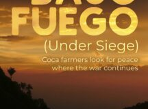 """""""Bajo fuego"""", a chronicle of failure foretold in Colombia"""